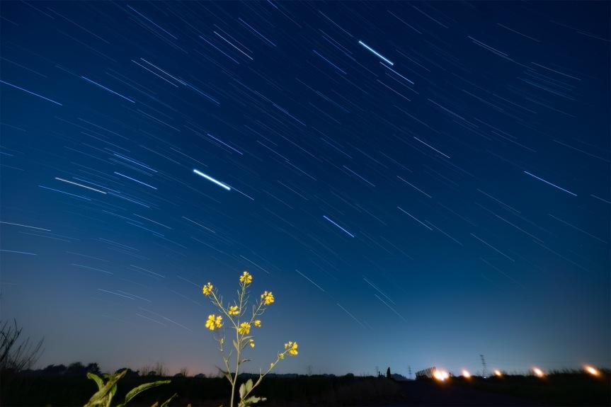 春の星図s_raw